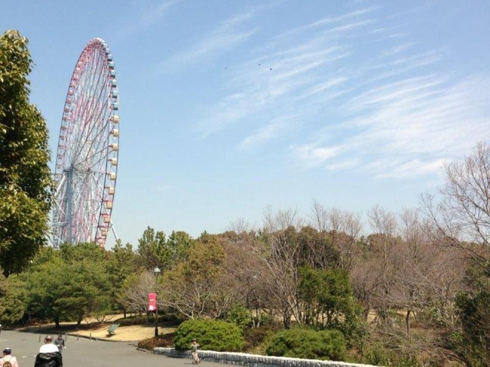 Ferris Wheel in Kasai Rinkai Park