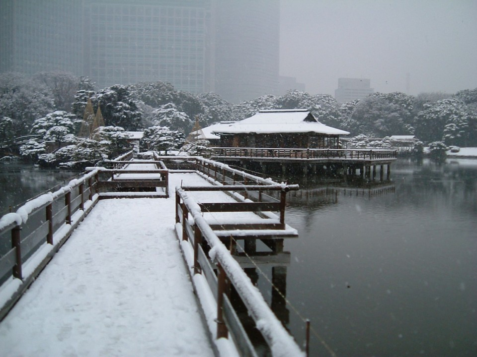 Hamarikyu during the winter