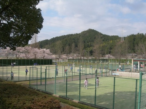 Suburban Tennis time images