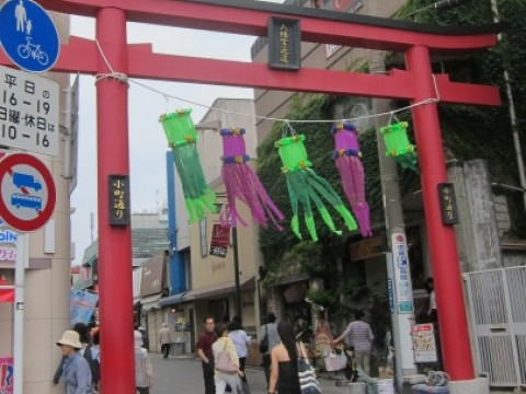 Looking for traditional snacks? Go to Kamakura! images