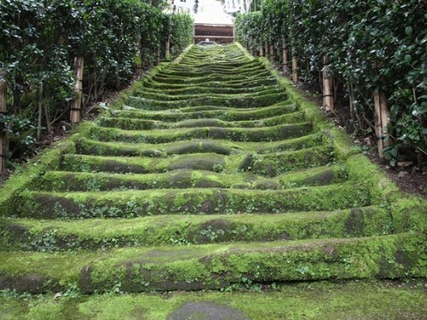 Go to Kamakura in Japan images