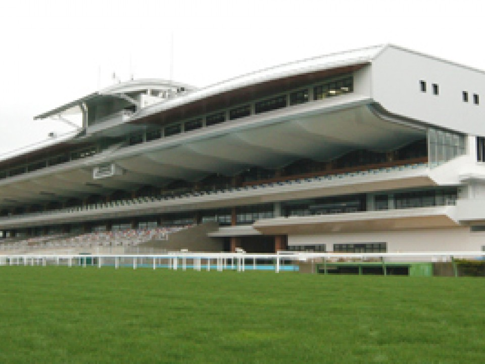 racetrack at hakodate