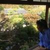 totowatanabe image