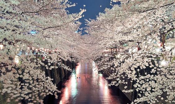 Nakameguro - TokyoStreetView